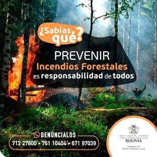 Incendios Forestales - Bolivia